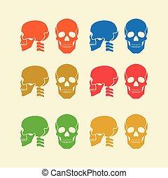 farverig, kranium, sæt, ikon, vektor