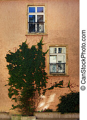 fasade - Red wall with windows and reflections and plant ...