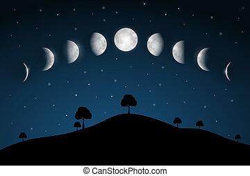 faserna, -, träd, måne, natt, landskap