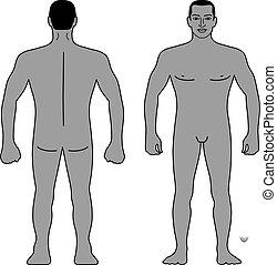 Fashion man figure