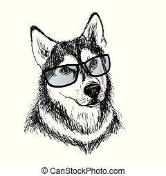 Fashionable dog with glasses