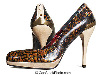 Fashionable female shoes on a white background
