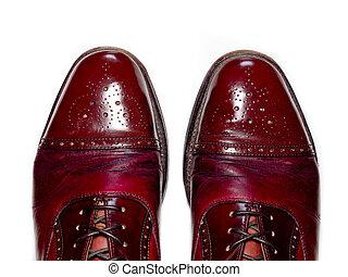 Fashionable male brogue shoes.