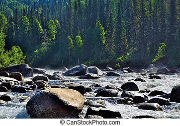Fast flowing mountain river among dense forests and huge stones