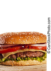 fast food - Cheeseburger with onions tomato and ketchup
