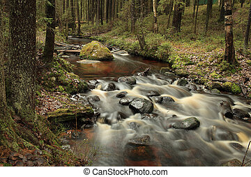 fast forest river long exposure