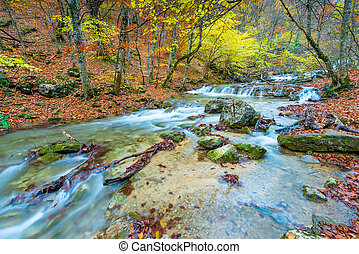 fast mountain river in the gorge, autumn nature, beautiful landscape