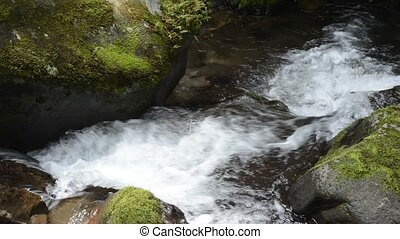 Fast narrow white brook flowing between mossy stones in...