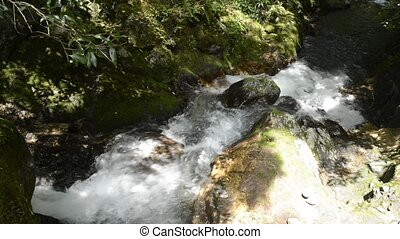 Fast narrow white brook flowing mossy rock slope in...