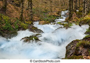 Fast river in mountains