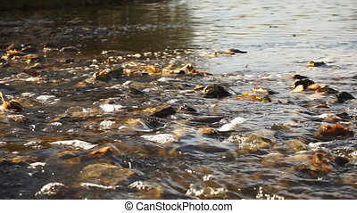 Fast river with rocky bottom closeup