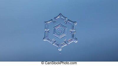 Snowflake melting timelapse, fast timelapse of snowflake melting
