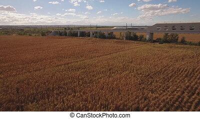 Fast train exits bridge near cultivated corn field - Side...