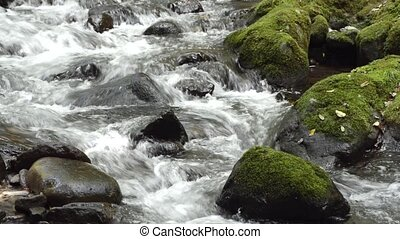 Fast white brook flowing through among stones in Kagoshima