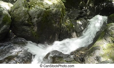Fast white narrow brook between mossy rocks in Kagoshima