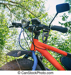 Fat bike-mountain bike with thick tires in forest