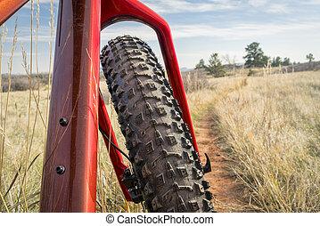 fat bike on a single track trail