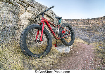 fat bike on a trail in northern Colorado