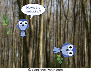 Fat bird on a diet perched on a tree branch against a ...