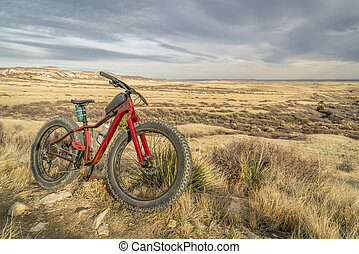 fat mountain bike on a trail in northern Colorado