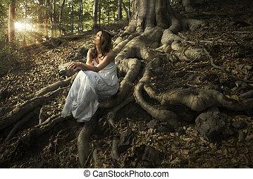 fata, di, il, foresta
