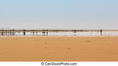 Fata Morgana - a mirage in the Libyan Desert
