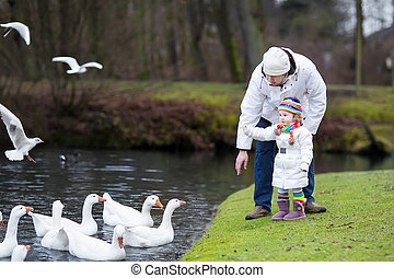 Father and daughter feeding geese