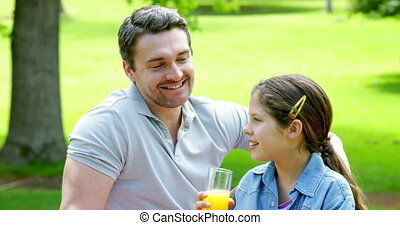 Father and daughter relaxing in the park together on a sunny...
