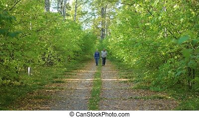 Father and daughter walking on a footpath in the Park
