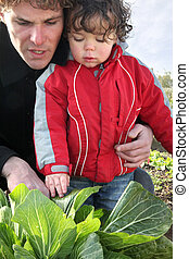 Father and son in vegetable garden