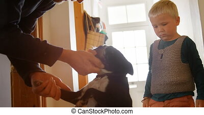 Father and son petting their pet dog at home 4k - Side view ...