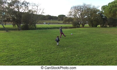 Father and Son Playing Chasing Ball - Young man and his...