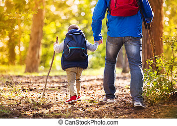 Father and son walking in autumn forest - Father and son...
