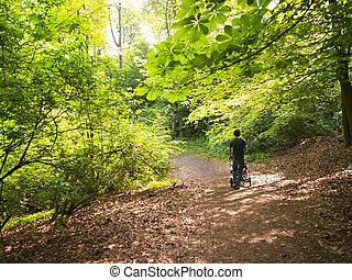Father Pushing Baby Carriage Through Woods