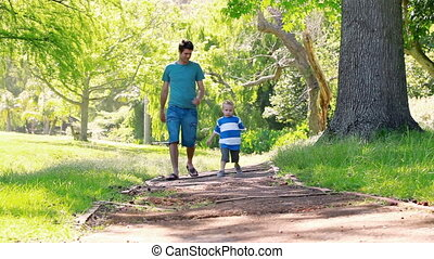 Father walking with his son
