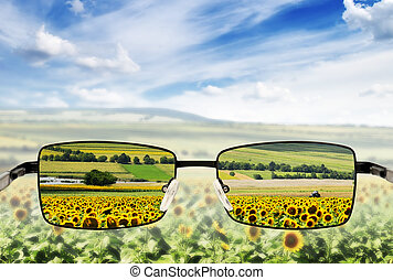 fattig, vision., begrepp, solglasögon, -, sunglasses.