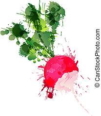 fatto, colorito, ravanello, schizzi, fondo, bianco