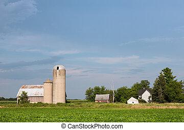 fattoria, abbandonato, spazio copia, famiglia