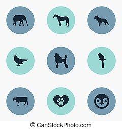 fattoria, altro, vettore, uccello, animali, cow., fauna, icons., synonyms, elementi, set, latteria, pinguino, stallone, semplice, illustrazione