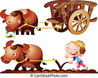 fattoria, bufalo, carrello, contadino