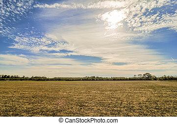 fattoria, campo, sopra, tramonto