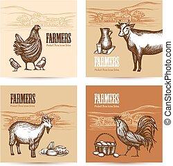 fattoria, cartelle, set