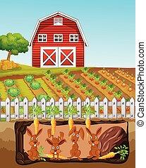 fattoria, coniglio, famiglia, felice