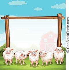 fattoria, cornice legno, sheeps