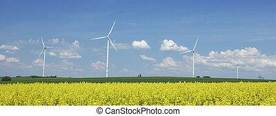 fattoria, di, windturbines, chiudere, a, stupro, campo