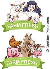 fattoria, disegno, animali, etichetta