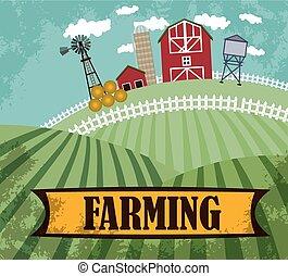fattoria, e, terreno coltivato