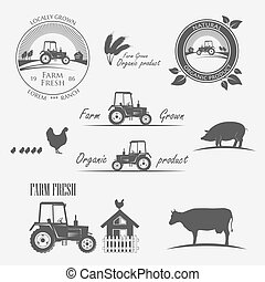 fattoria fresca, produrre