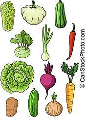 fattoria fresca, verdura, organico, isolato