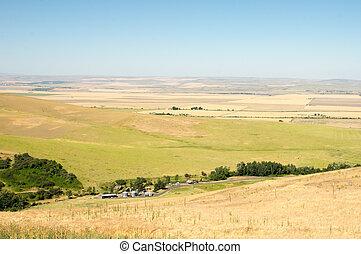 fattoria, prateria, terra